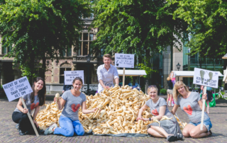 Actie Den Haag in beeld